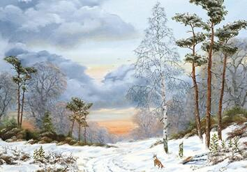 Fox In A Snowy Landscape With Trees M18